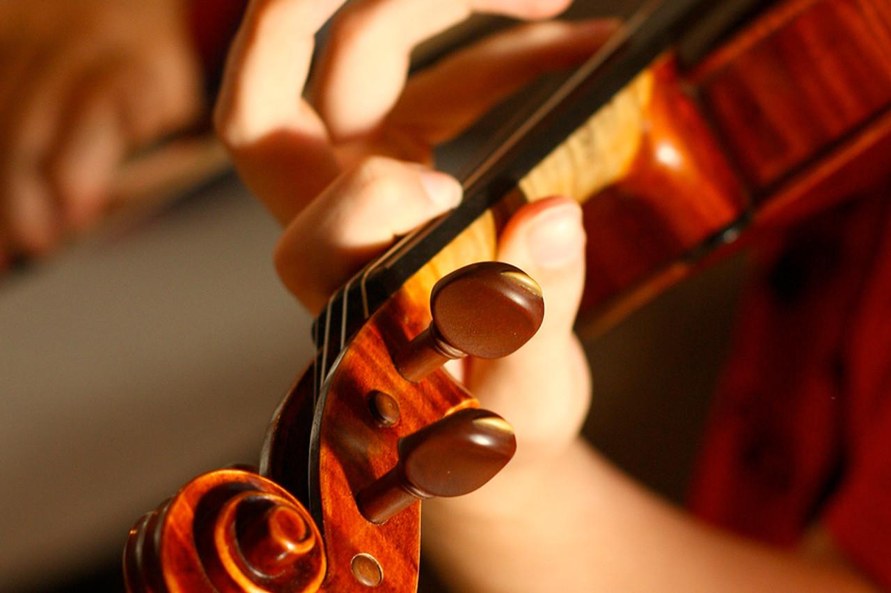 Immagine per Il Violino di Viktor